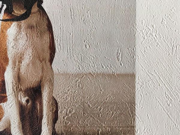 Tapiwall Plaster | Fényes, érdes felületű vlies tapéta